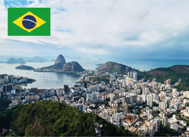 The National Institute of Industrial Property of Brazil (INPI) issued Resolution No. 227/2018 of October 25, 2018, on the examination of pending patent applications